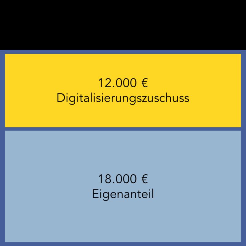 Abbildung 3: Mit bis zu 12.000 Euro fördert der Staat Projekte zur Digitalisierung in Pflegeeinrichtungen.